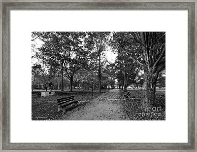 Kenyon College Middle Path Framed Print by University Icons
