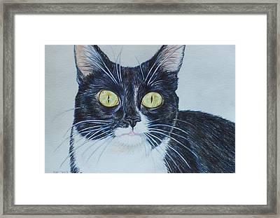 Kenzie Framed Print by Beth Clark-McDonal