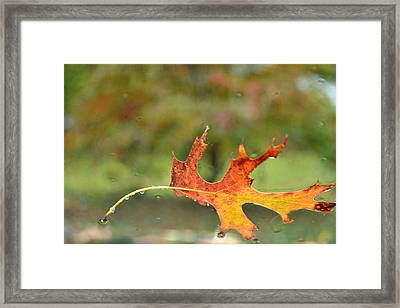 Kept From Falling Framed Print by Carlee Ojeda