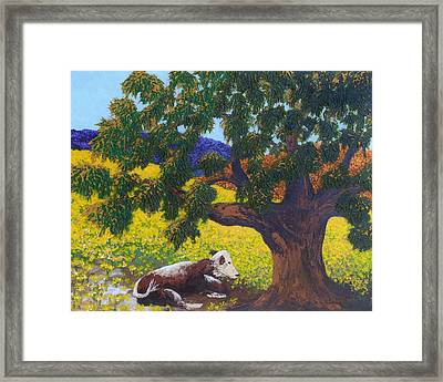 Kern County Cow Framed Print