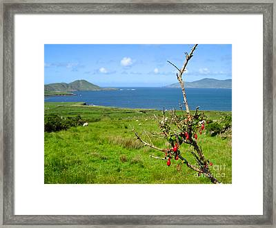 Framed Print featuring the photograph Kerry Me Away by Suzanne Oesterling