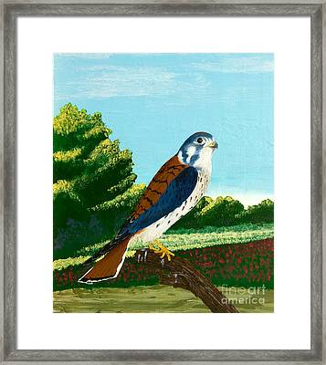 Kestrel And Flowers Framed Print