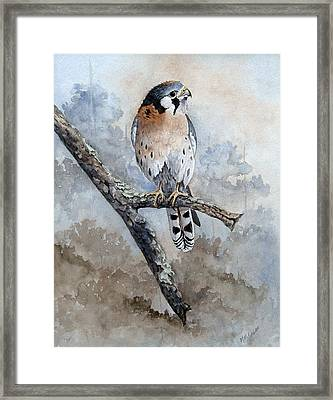 Framed Print featuring the painting Kestrel Perch by Mary McCullah