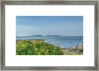 Framed Print featuring the photograph Kettle Cove by Jane Luxton