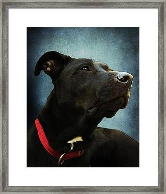 Kettles The Majestic Framed Print by Shawna Rowe