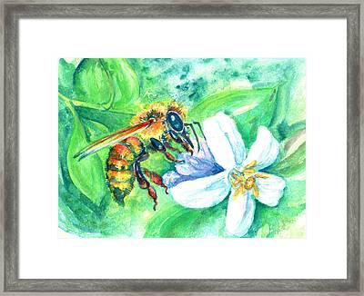 Key Lime Honeybee Framed Print