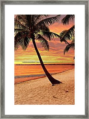 Key West Beach Framed Print by Marty Koch