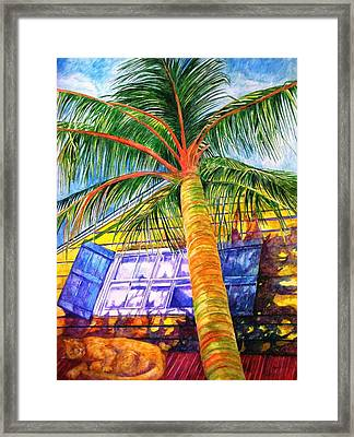 Key West Cat On A Hot Tin Roof Framed Print