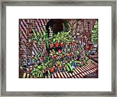 Key West Garden Club Pots Framed Print by Joan  Minchak