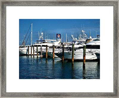 Key West Marina Framed Print by Claudette Bujold-Poirier