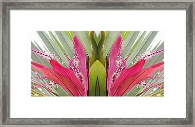 Key West Symmetry Framed Print