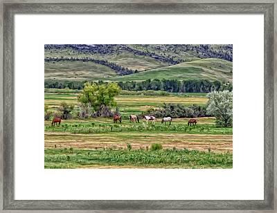 K G Ranch Framed Print