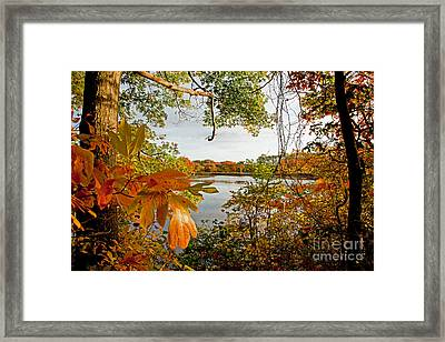 Kickimuit View Framed Print by Butch Lombardi