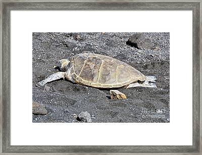 Framed Print featuring the photograph Kickin' Back by David Lawson