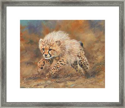 Kicking Up Dust 3 Framed Print by David Stribbling