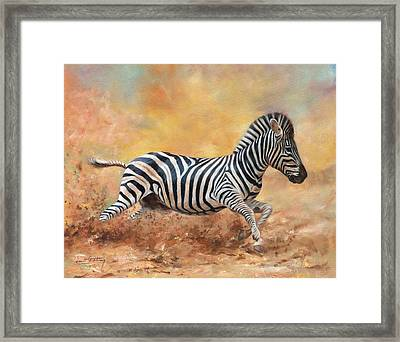 Kicking Up Dust Framed Print