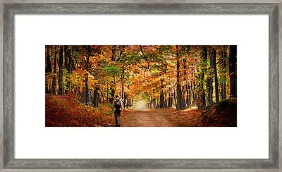 Kid With Backpack Walking In Fall Colors Framed Print