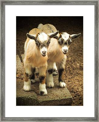 Kids One And Two Framed Print by Karen Wiles