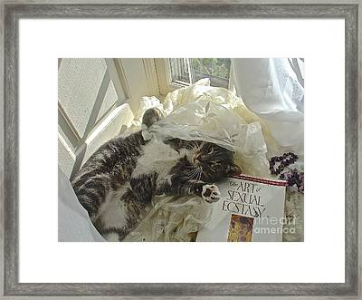 Framed Print featuring the photograph Kiki Kinky In Ecstasy by Delona Seserman