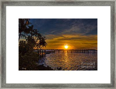 Kikin' Back Framed Print by Rene Triay Photography