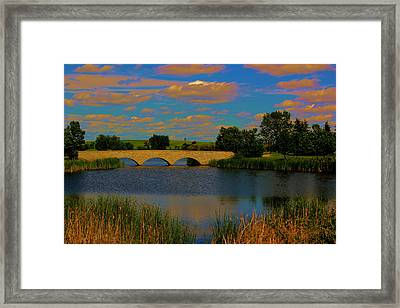 Kilkona Park Bridge Framed Print