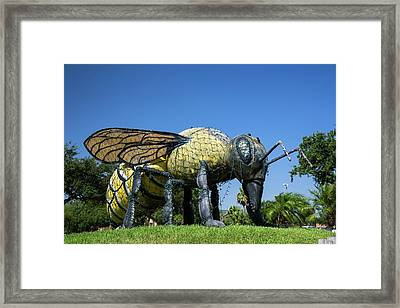 Killer Bee Model Framed Print by Jim West