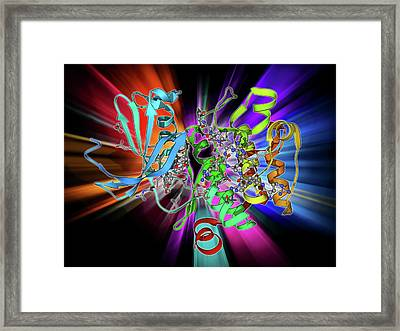 Kinase Inhibitor Complex Framed Print by Laguna Design