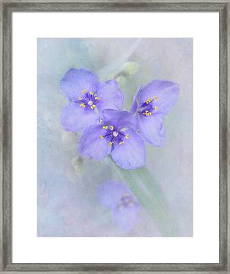 Kinda' Blue Framed Print