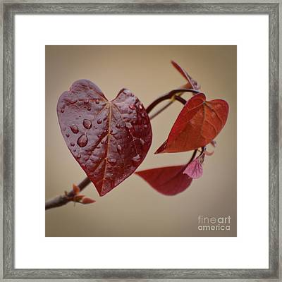 Kindness Can Change The World Framed Print by Kerri Farley