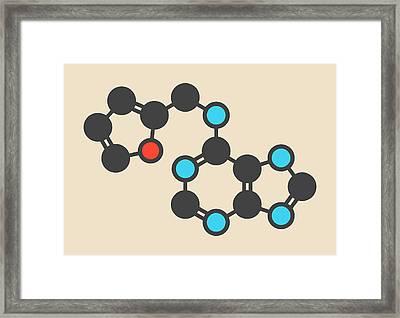 Kinetin Plant Hormone Molecule Framed Print by Molekuul