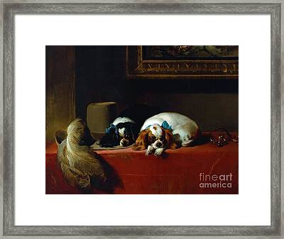 King Charles Spaniels Framed Print by Pg Reproductions