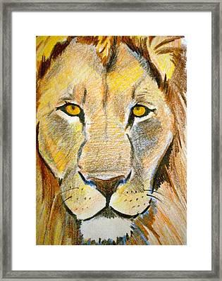 King Framed Print by Debi Starr