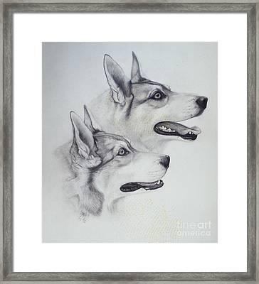 King Dogs Framed Print