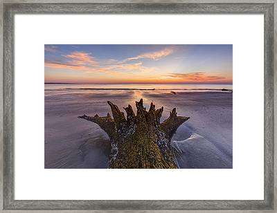 King Neptune Framed Print by Debra and Dave Vanderlaan