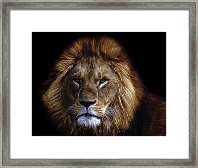 King Of Africa Framed Print