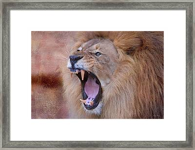 Framed Print featuring the photograph King Of Beasts by Dyle   Warren