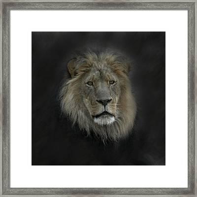 King Of Beasts Portrait Framed Print by Ernie Echols