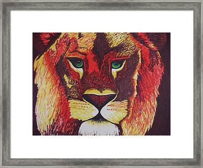 Lion In Orange Framed Print