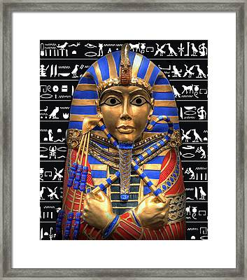 King Of Egypt Framed Print by Daniel Hagerman