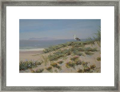 King Of The Beach Framed Print by Tina Obrien