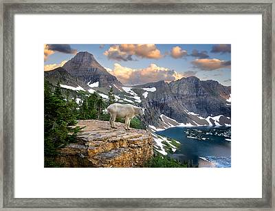 King Of The Mountains Framed Print by Bernard Chen
