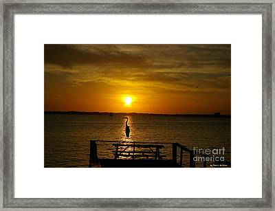 Framed Print featuring the photograph King Of The Pier by Tannis  Baldwin