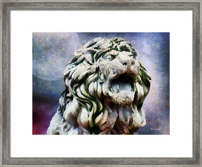 King Of The Sky Framed Print by RC deWinter