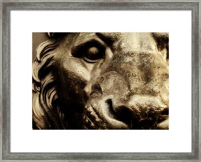 King Of Union Square Park Framed Print