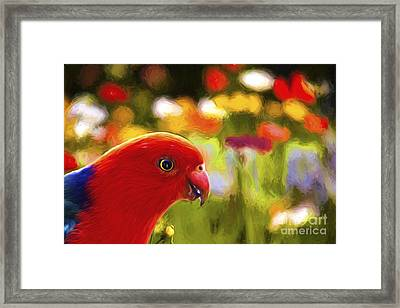 King Parrot With Flowers Framed Print