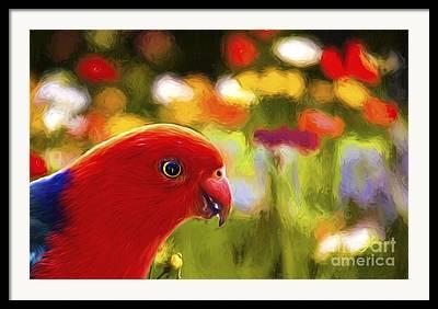 Parrot With Flower Framed Prints