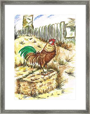 King Rooster Framed Print by Teresa White