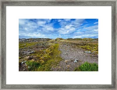 King Salmon Dunes Framed Print