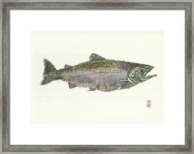 King Salmon Gyotaku Framed Print