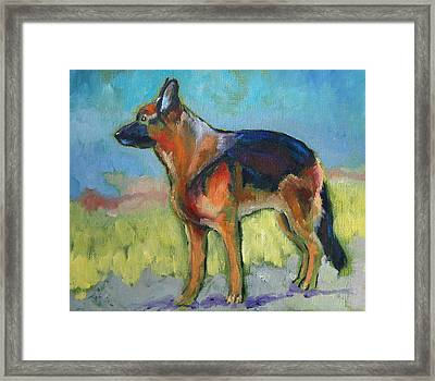 King The German Shepherd Dog Framed Print